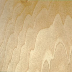 CAN/AM GOLD+ by PureBond Plywood
